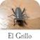El Grillo (AppStore Link)